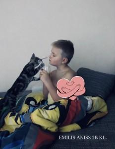 Emilis Aniss 2B Skuodo Bartuvos progimnazija-001